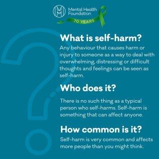 Self Harm 1
